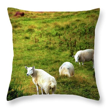 Throw Pillow featuring the photograph Rural Idyll. Wicklow. Ireland by Jenny Rainbow