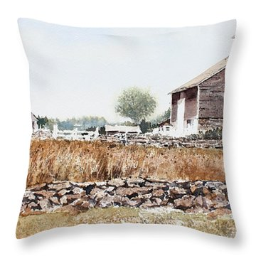 Rural Maine Throw Pillow by Monte Toon