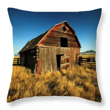 Rural Noir Throw Pillow