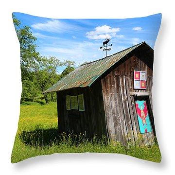 Rural Panache Throw Pillow
