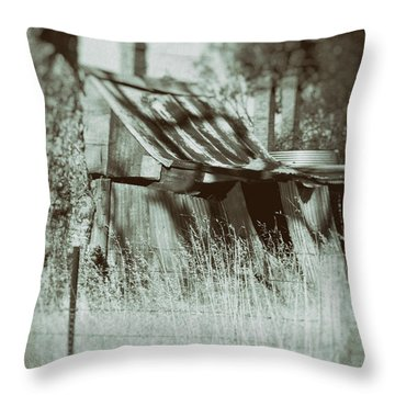 Throw Pillow featuring the photograph Rural Reminiscence by Linda Lees