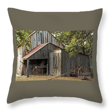 Rural Texas Throw Pillow