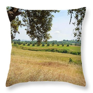 Throw Pillow featuring the photograph Rural Tuscany by Valentino Visentini