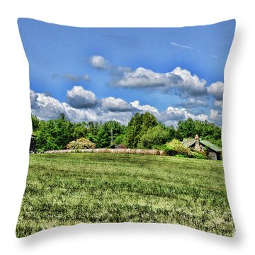 Rural Virginia Throw Pillow by Paul Ward