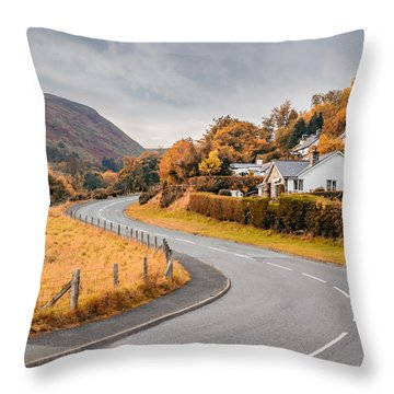 Rural Wales In Autumn Throw Pillow