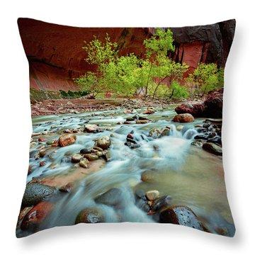 Rush At Narrows Throw Pillow