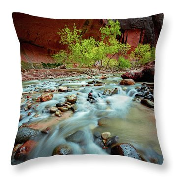 Rush At Narrows Throw Pillow
