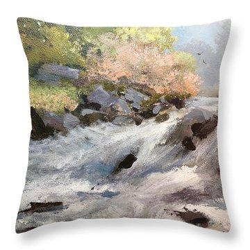 Rush Throw Pillow by Helen Harris
