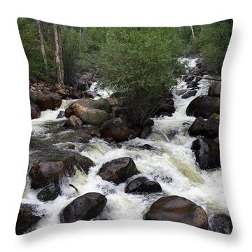Rush Hour Throw Pillow by Beth Saffer