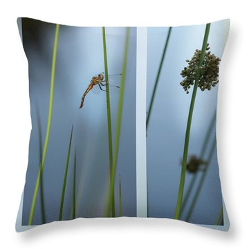 Rushes And Dragonfly Throw Pillow