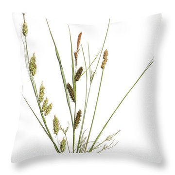 Rushes And Sedges Throw Pillow