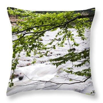 Rushing River Throw Pillow by Thomas R Fletcher