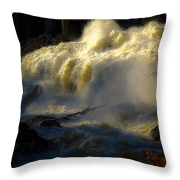 Rushing Water Throw Pillow by Sherman Perry