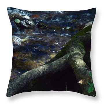 Throw Pillow featuring the photograph Rushing Waters Of Life by Wanda Brandon