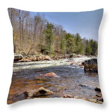 Throw Pillow featuring the photograph Rushing Waters Of The Moose River by David Patterson