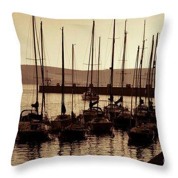 Russet Harbour Throw Pillow