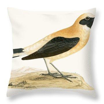 Russet Wheatear Throw Pillow
