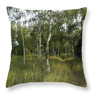 Russia Throw Pillow by Svetlana Sewell