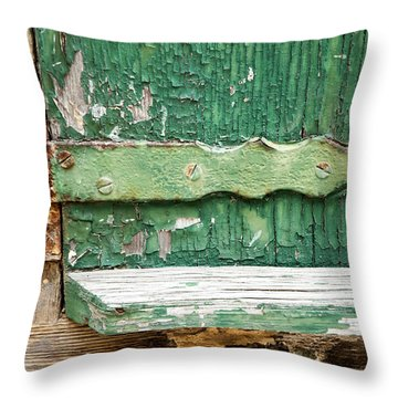 Rust And Paint Throw Pillow by Allen Carroll