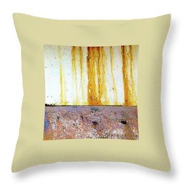 Rust Throw Pillow by Anne Kotan