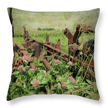 Rust In Peace Throw Pillow by Scott Kingery