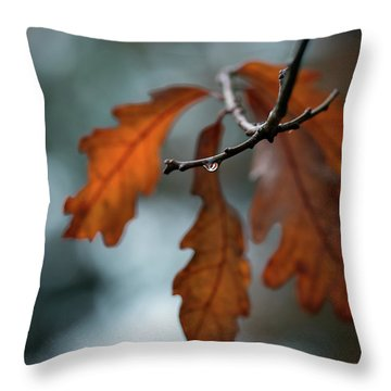 Rust Orange Oak Leaves In The Rain Throw Pillow