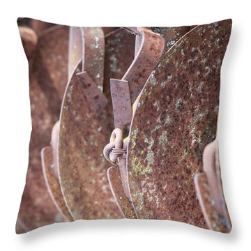 Rusted Blades Throw Pillow by Lisa Knechtel