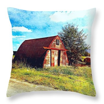 Rusted Shed, Lazy Afternoon Throw Pillow by Steven Gordon