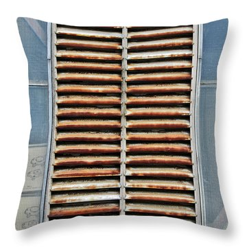 Rusted Shut Throw Pillow
