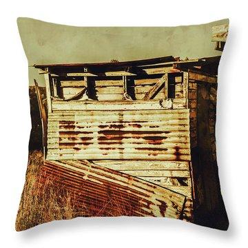 Rustic Abandonment Throw Pillow