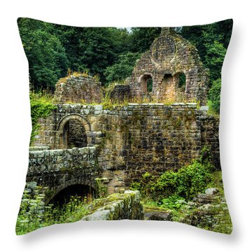 Throw Pillow featuring the photograph Rustic Abbey Remains by Dennis Dame