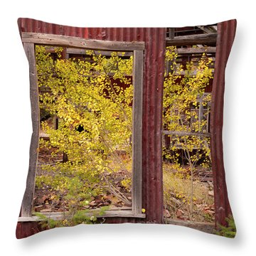 Rustic Autumn Throw Pillow by Leland D Howard