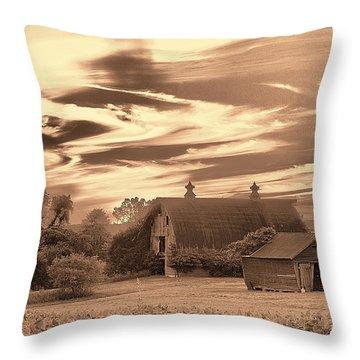 Rustic Barn 2 Throw Pillow