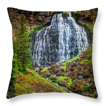 Rustic Falls  Throw Pillow