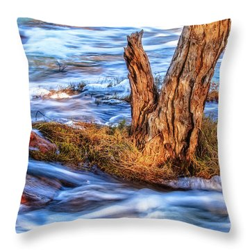 Rustic Island, Noble Falls Throw Pillow by Dave Catley
