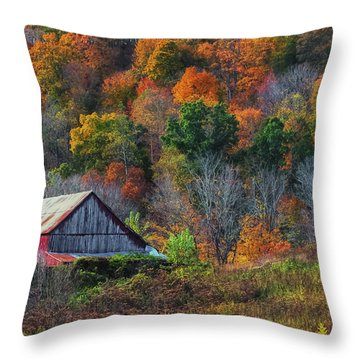 Rustic Out Building In Southern Ohio  Throw Pillow