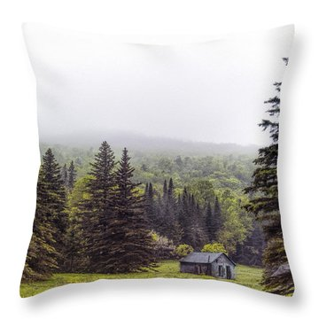Rustic Remnant Throw Pillow by Richard Bean