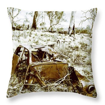 Rustic Rural Decay Throw Pillow