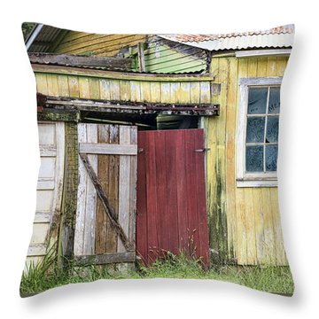 Rustic Shed Panorama Throw Pillow