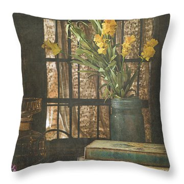 Rustic Still Life 1 Throw Pillow