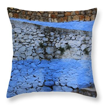Throw Pillow featuring the photograph Rustic Wall by Ramona Johnston