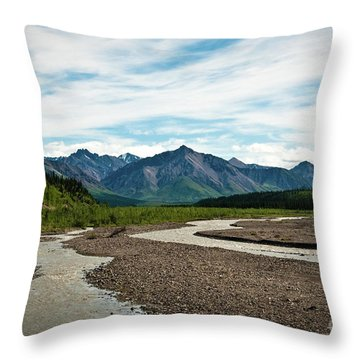 Rustic Water Throw Pillow
