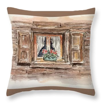 Rustic Window Throw Pillow by Stephanie Sodel