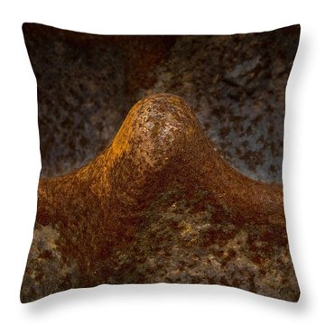 Throw Pillow featuring the photograph Rustwave by WB Johnston