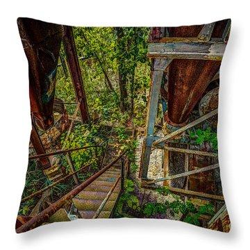 Rusty Climb Throw Pillow