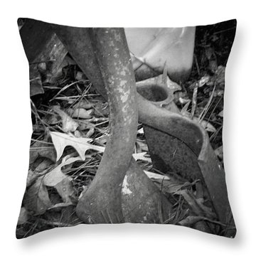Throw Pillow featuring the photograph Rusty Embrace by Betty Northcutt