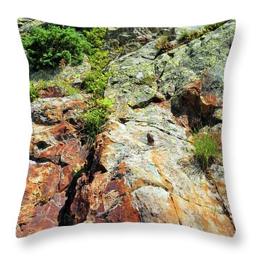 Rusty Rock Face Throw Pillow