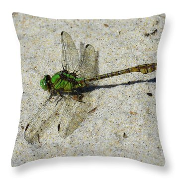 Throw Pillow featuring the photograph Rusty Snaketail by Sally Sperry