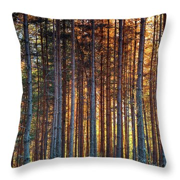 Rusy Forest Throw Pillow by Evgeni Dinev