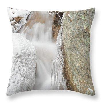 Ruxton Of Manitou  Throw Pillow by Bijan Pirnia